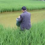 rp_agriculture-4.jpg