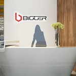 rp_bigger-768x565.jpg